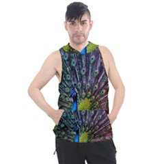 Peacock Colors Bird Colorful Men s Sleeveless Hoodie