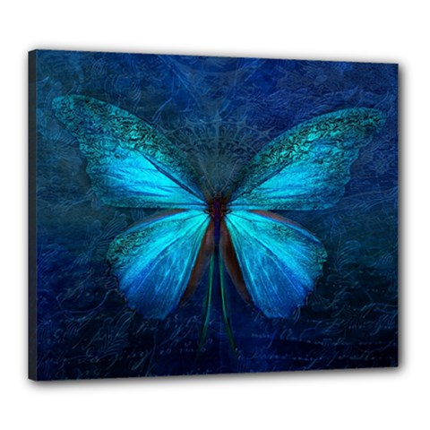 Animal Butterfly Insect Canvas 24  X 20  (stretched)