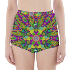 Birds In Peace And Calm High-waisted Bikini Bottoms by pepitasart