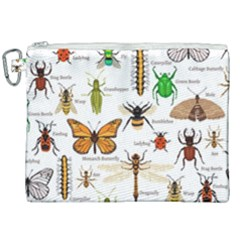 Insects Seamless Pattern Canvas Cosmetic Bag (xxl)
