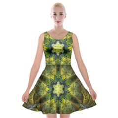 Fractal Fantasy Design Background Velvet Skater Dress