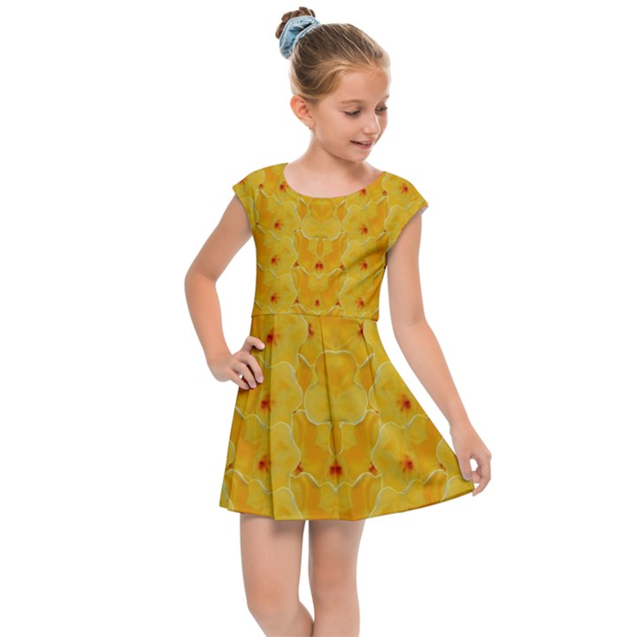 Blossoms  So Free In Freedom Kids  Cap Sleeve Dress
