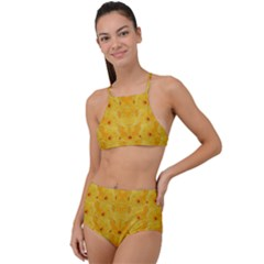 Blossoms  So Free In Freedom High Waist Tankini Set