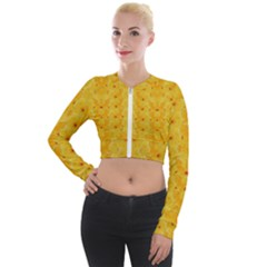 Blossoms  So Free In Freedom Long Sleeve Cropped Velvet Jacket