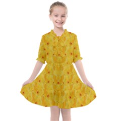 Blossoms  So Free In Freedom Kids  All Frills Chiffon Dress