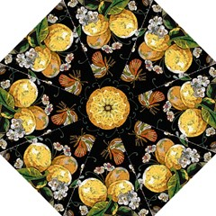 Embroidery Blossoming Lemons Butterfly Seamless Pattern Hook Handle Umbrellas (medium)