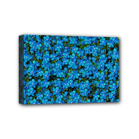 Blue Sakura Forest  Tree So Meditative And Calm Mini Canvas 6  X 4  (stretched) by pepitasart