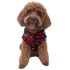 Red Floral Dog Sweater