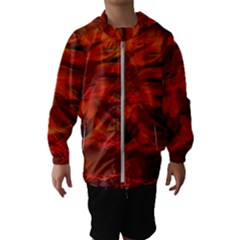 Fire Lion Flame Light Mystical Kids  Hooded Windbreaker