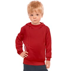 Wavy Rouge Red  Kids  Hooded Pullover