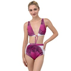 Fun Fuschia Tied Up Two Piece Swimsuit
