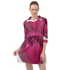 Fun Fuschia Mini Skater Shirt Dress