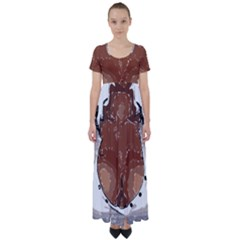 Sexy Boobs Breast Cleavage Woman High Waist Short Sleeve Maxi Dress