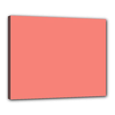True Coral Pink Color Canvas 20  X 16  (stretched)