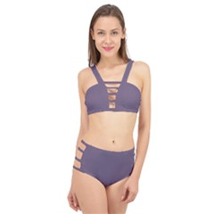 Grape Compote Purple Color Cage Up Bikini Set