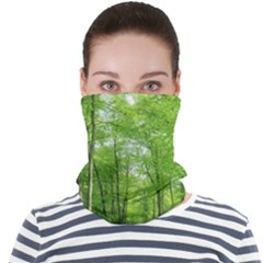 In The Forest The Fullness Of Spring, Green, Face Seamless Bandana (adult)