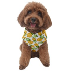 Pineapples Dog Sweater by goljakoff