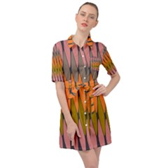 Zappwaits - Your Belted Shirt Dress