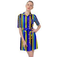 Blueyellow  Belted Shirt Dress