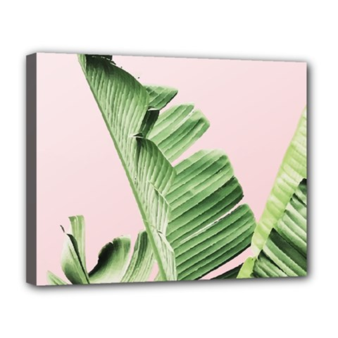 Palm Leaf Canvas 14  X 11  (stretched) by goljakoff