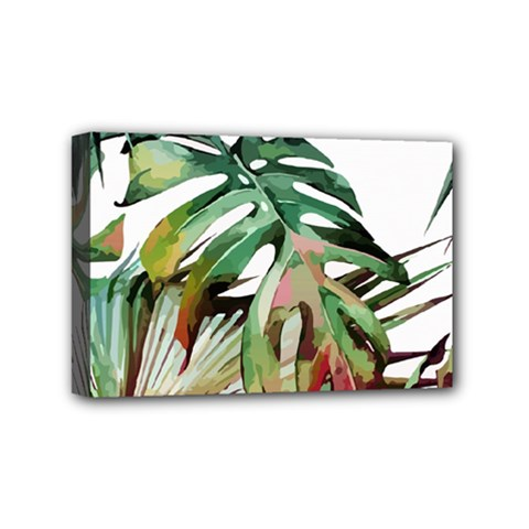 Watercolor Monstera Leaves Mini Canvas 6  X 4  (stretched) by goljakoff