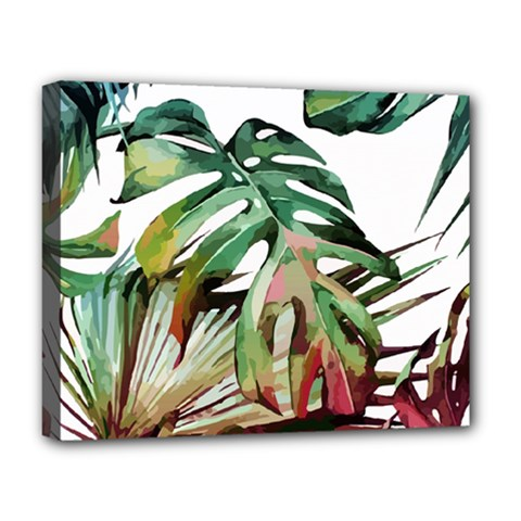 Watercolor Monstera Leaves Deluxe Canvas 20  X 16  (stretched) by goljakoff