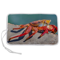 Colored Crab, Galapagos Island, Ecuador Pen Storage Case (m)