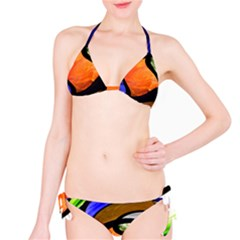 Colorful Group Classic Bikini Set