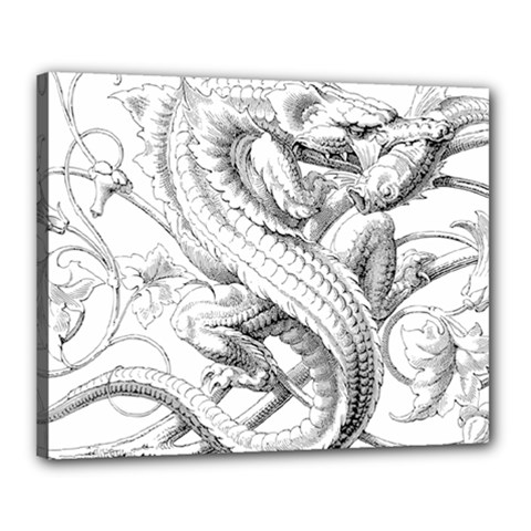 Dragon Lizard Vector Monster Canvas 20  X 16  (stretched)