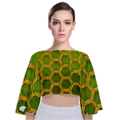 Hexagon Windows Tie Back Butterfly Sleeve Chiffon Top