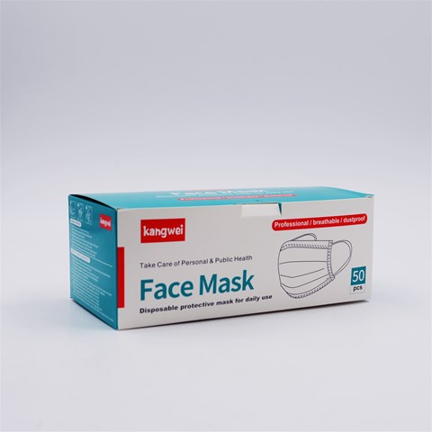 3-Ply Disposable Masks (100pcs)