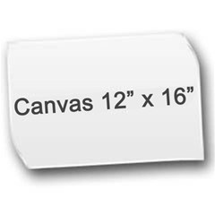 Canvas 12  x 16  Icon