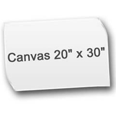 Canvas 20  x 30  Icon