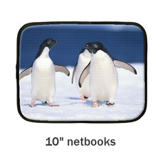 Netbook Case (Medium) Icon