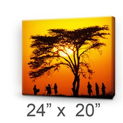Canvas 24  x 20  (Stretched) Icon