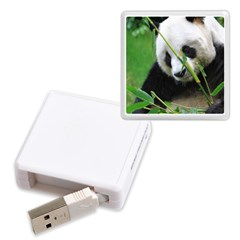 Memory Card Reader (Square) Icon