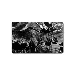 Vintage Usa Alaska Bull Moose 1970 Name Card Sticker Magnet by Vintagephotos