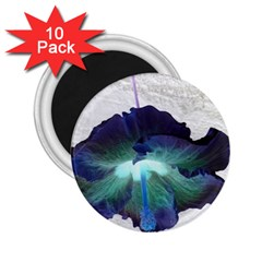 Exotic Hybiscus   10 Pack Regular Magnet (round) by dawnsebaughinc
