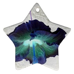 Exotic Hybiscus   Twin Sided Ceramic Ornament (star) by dawnsebaughinc