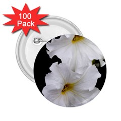 White Peonies   100 Pack Regular Button (round)