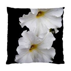 White Peonies   Twin Sided Cushion Case by Elanga