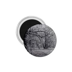 Black And White Forest Small Magnet (round)