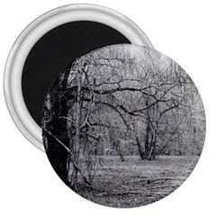 Black And White Forest Large Magnet (round) by Elanga