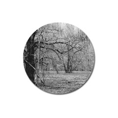 Black And White Forest Large Sticker Magnet (round) by Elanga