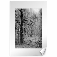 Black And White Forest 24  X 36  Unframed Canvas Print