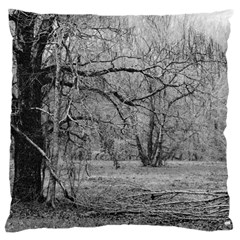 Black And White Forest Large Cushion Case (two Sides)