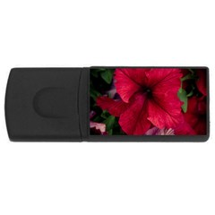 Red Peonies 4gb Usb Flash Drive (rectangle)