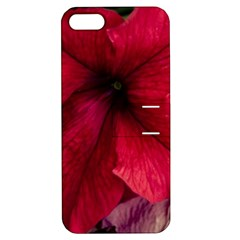 Red Peonies Apple Iphone 5 Hardshell Case With Stand by Elanga
