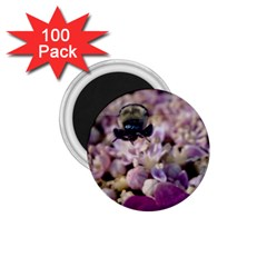 Flying Bumble Bee 100 Pack Small Magnet (round) by Elanga