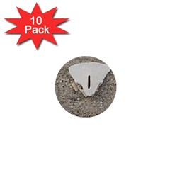 Quarter Of A Sand Dollar 10 Pack Mini Button (round) by Elanga